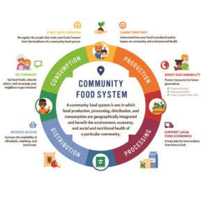 Steven Mesia Community Food System
